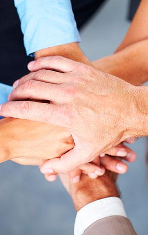 Primafrio - Partners estratégicos